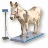 Brecknell PS1000 / PS2000 Floor Scales