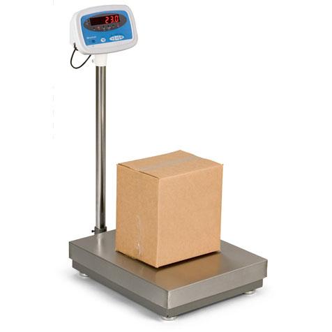 Salter Brecknell S100 Floor Scales