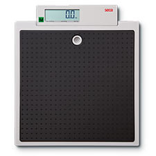 Seca 875 Flat Scales for Mobile Use